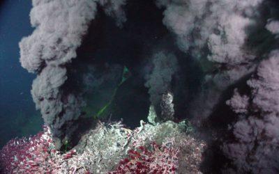 Activité cycle 3 : La vie au niveau des sources Hydrothermales
